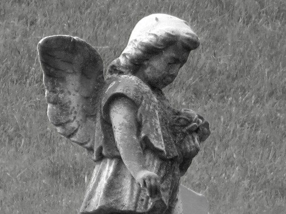 But, this little angelic marker stands tall and begs me to get a closer look ...