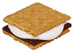 S'mores: Goo on a cracker
